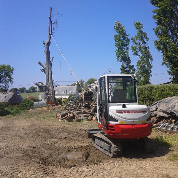 abattage d'arbre délicat dans les côtes-d'Armor 22